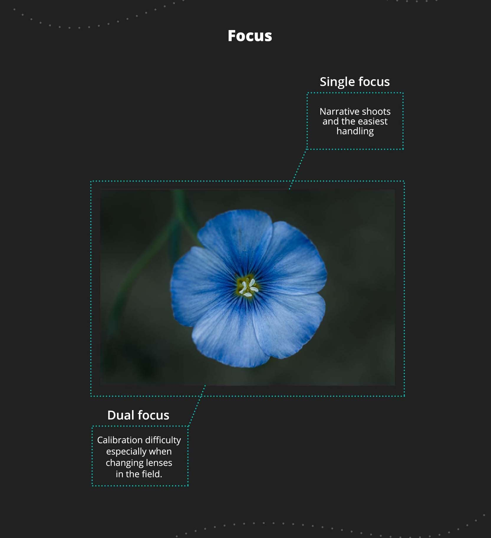 Anamorphic dual and single focus