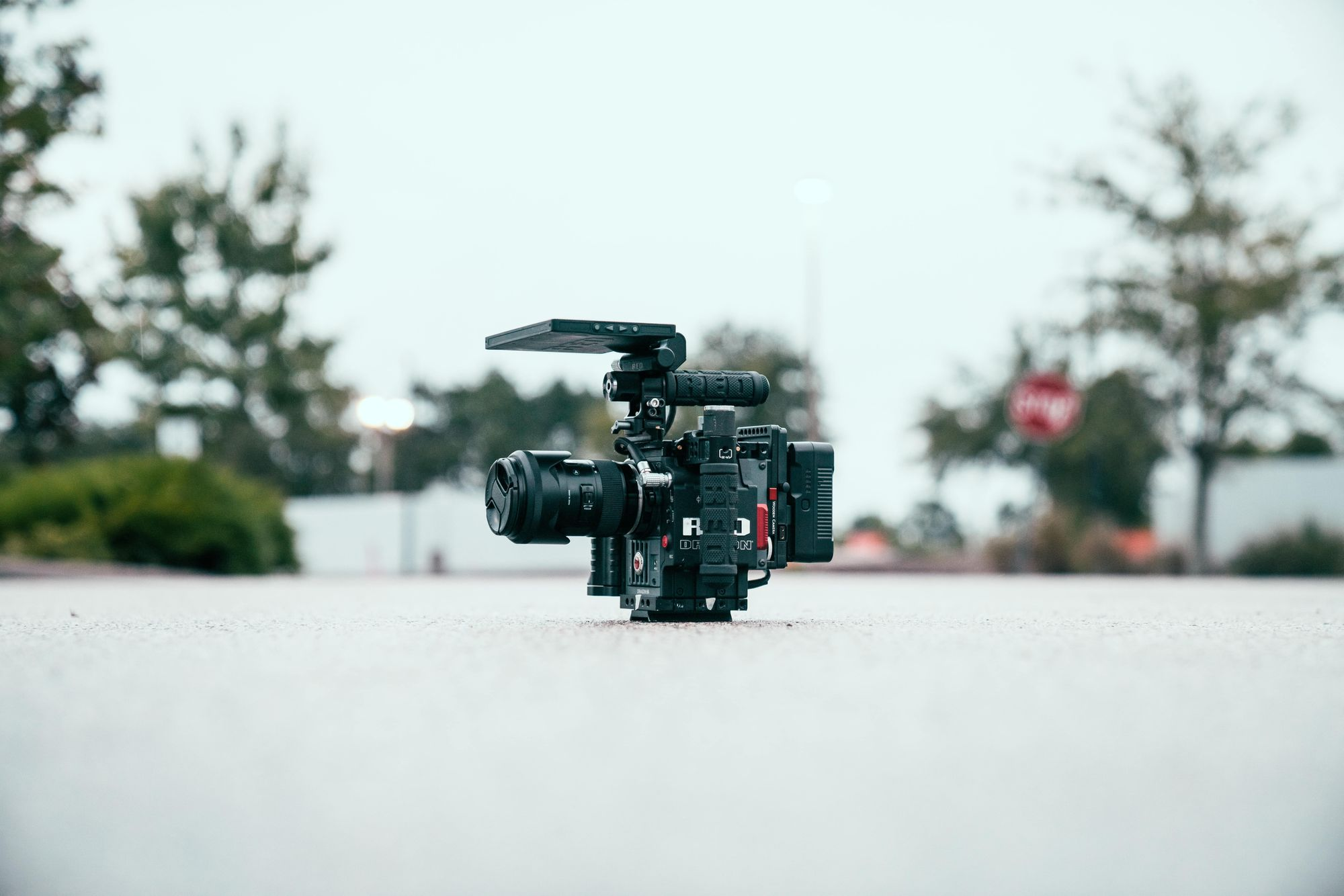 RED dragon camera for the best RED cameras